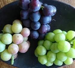 黒盆に3種の葡萄が盛られています
