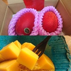 箱に入ったマンゴーとカットしたマンゴー