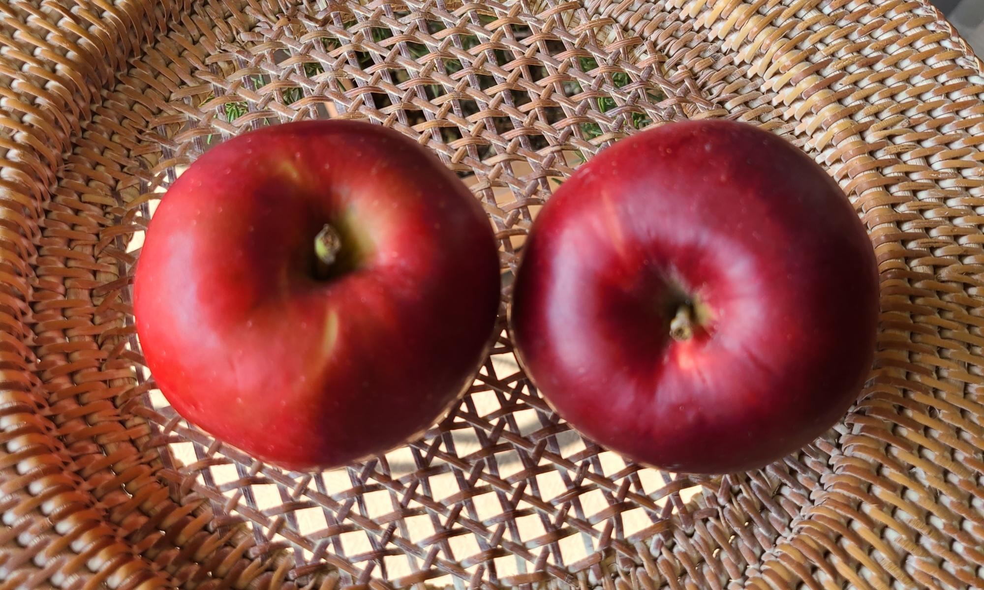 平らな籠の中に真っ赤な林檎が2つ並んでいます。