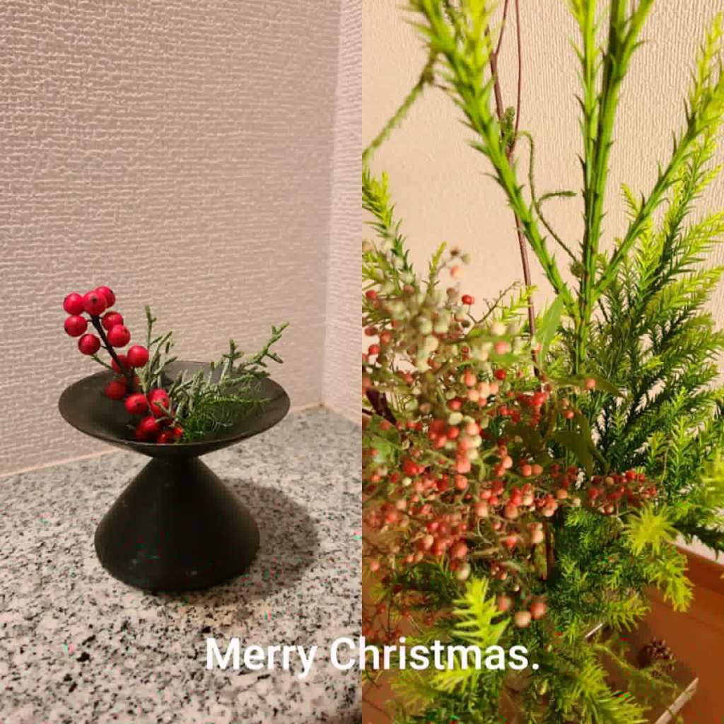お部屋に飾った花たち(クリスマス)