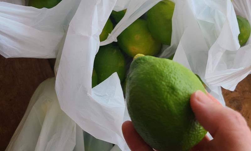 香り高い青々したレモンを袋から取り出し